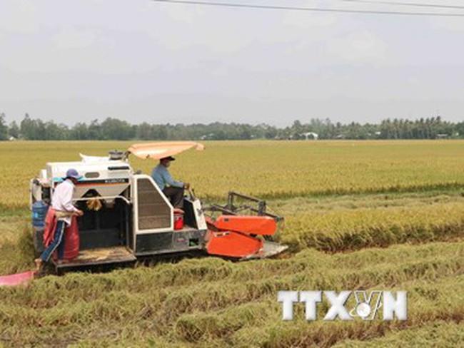 Venezuela phê chuẩn thỏa thuận hợp tác nông nghiệp với Việt Nam