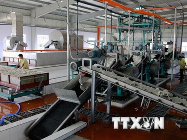 Sẽ có sàn giao dịch cho các nước sản xuất cao su Đông Nam Á