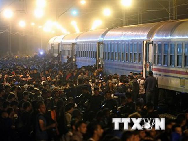 Khu vực biên giới các nước Balkan bị quá tải người di cư