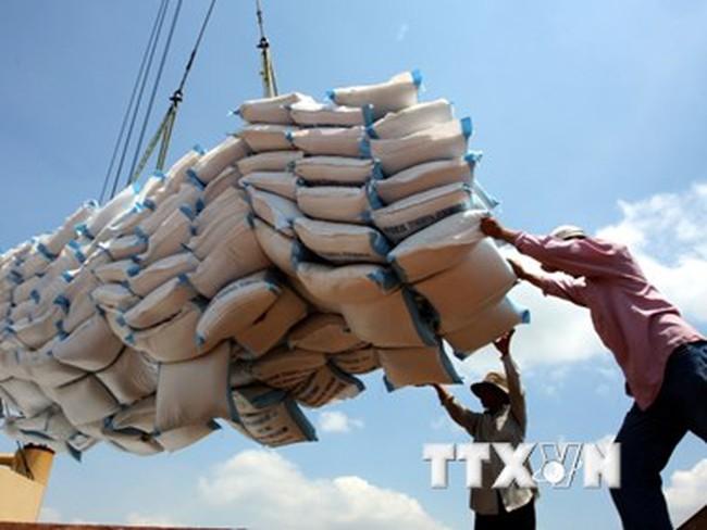 Nhu cầu giảm, mục tiêu xuất khẩu 6,8 triệu tấn gạo gặp thách thức
