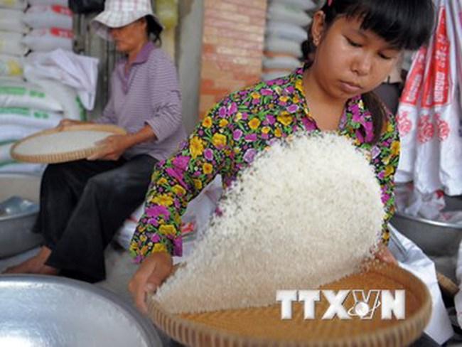 Campuchia lo ngại nhân dân tệ phá giá ảnh hưởng đến xuất khẩu gạo