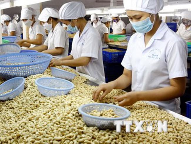 Xuất khẩu nông lâm thủy sản 8 tháng giảm gần 5% so với cùng kỳ