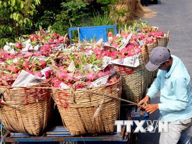 Hàng nông, thủy sản Việt Nam đã có những đối thủ cạnh tranh