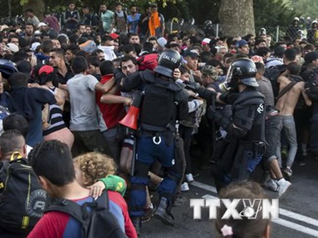 EU triệu tập cuộc họp thượng đỉnh khẩn cấp về khủng hoảng di cư