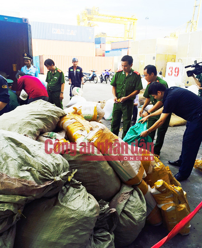 Thêm container ngà voi và vảy tê tê lậu 'cập cảng' Tiên Sa