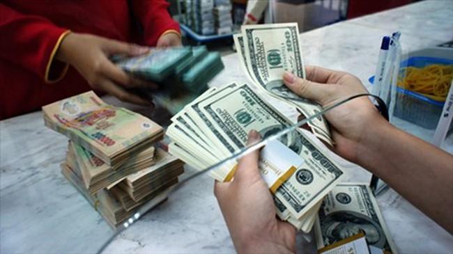USD mạnh, Euro giảm sâu và áp lực lên tỷ giá trong nước