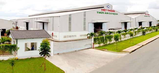 Thức ăn chăn nuôi Việt Thắng (VTF): Quý 3 lãi ròng 31,2 tỷ đồng giảm gần 40% so với cùng kỳ