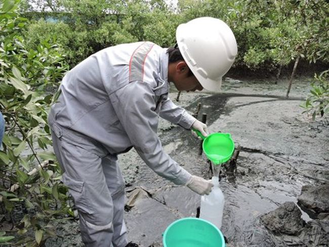 Vụ cá chết trắng sông: Thanh tra các nhà máy chế biến hải sản