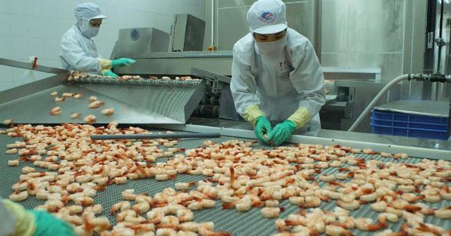 Nhiều rủi ro khi xuất khẩu thủy sản sang Trung Quốc