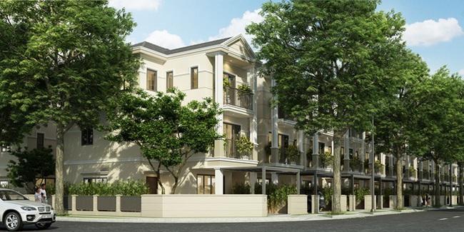 Chiêm ngưỡng biệt thự phong cách sống xanh Nine South estates