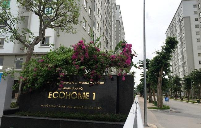 Capital House ưu đãi đặc biệt cho thuê Kios 2 tầng Ecohome