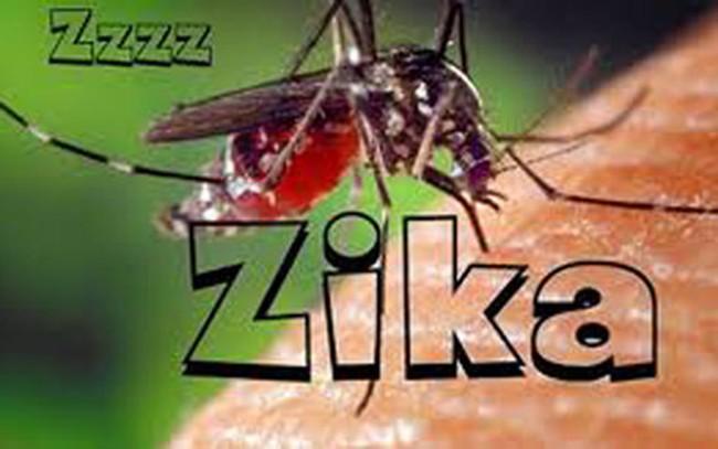 Đồng Nai có nguy cơ nhiễm virus Zika cao