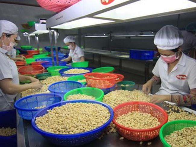 WTO: Việt Nam có tỷ lệ tăng trưởng xuất nhập khẩu ấn tượng