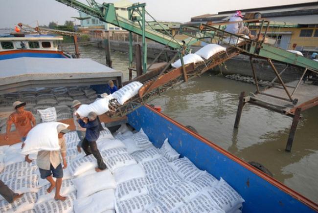 Xuất khẩu gạo căng đến phút chót