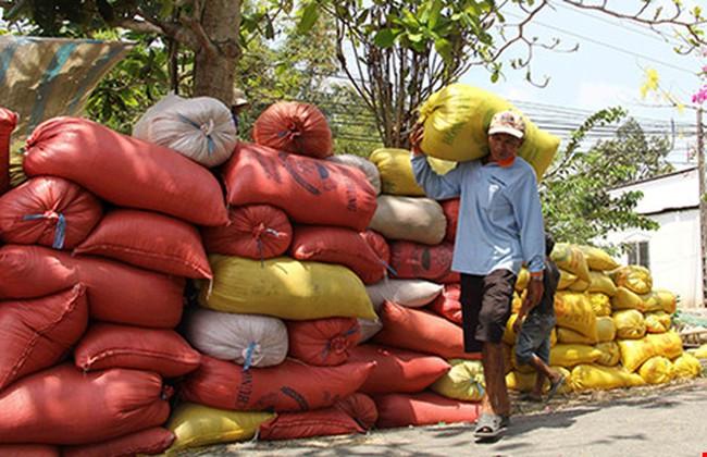Trung Quốc sang tận ruộng kiểm tra gạo Việt