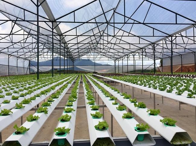 Dự án 80ha tại Hà Đông của Tập đoàn Vingroup sắp được khởi công