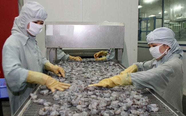Tôm Việt thêm khó khi Hoa Kỳ tăng thuế chống phá giá