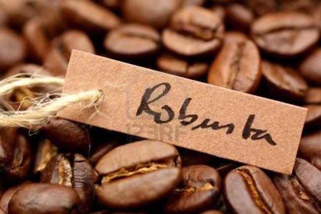 Châu Á chuộng cà phê hoà tan sẽ giúp tăng nhu cầu robusta
