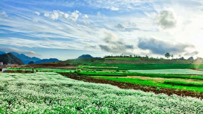 Lập đồ án Quy hoạch chung xây dựng Khu du lịch quốc gia Mộc Châu