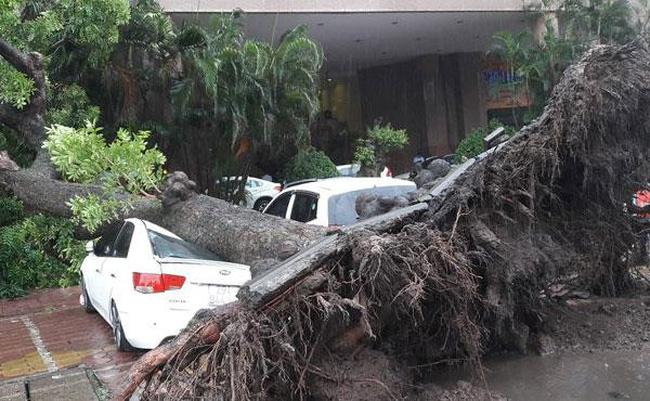 Bão số 3 càn quét, miền Bắc thiệt hại nặng nề