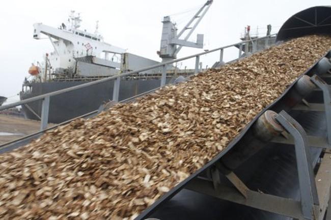 Doanh nghiệp xuất khẩu dăm gỗ kêu khó vì đăng kiểm: Có chấp nhận rủi ro khi bỏ qua quy chuẩn?