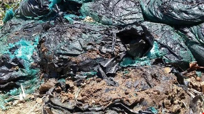 Kiểm tra nóng hàng tấn chất thải của Formosa chôn ở trang trại
