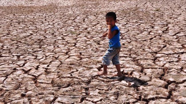 Hạn, mặn gây thiệt hại 5.572 tỷ đồng