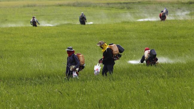 """Công ty lãi to nhất nhì ngành nông nghiệp mất đi đáng kể """"sức mạnh""""  vì lao theo cơn sốt này"""