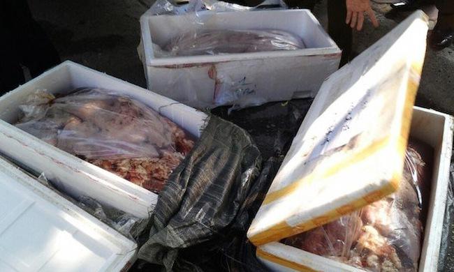 Cục Thú ý nói gì về tình trạng thịt bẩn, nội tạng thối?