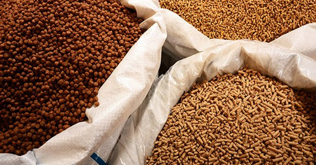 Tập đoàn Hòa Phát chi 2.500 tỷ đồng thành lập Công ty nông nghiệp