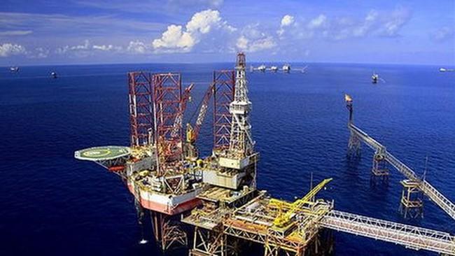 Hơn 50% lợi nhuận của Petrolimex từ kinh doanh xăng dầu