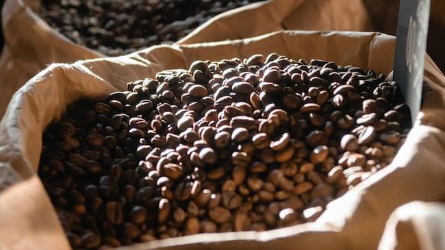 Lợi nhuận thấp đe doạ tương lai cây cà phê