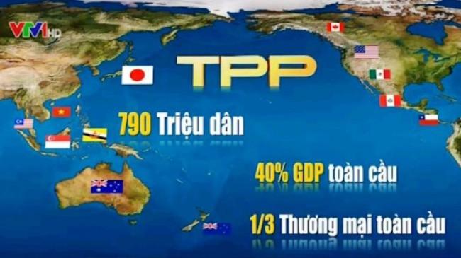 Với TPP: DN Việt cần sẵn sàng đón cơ hội hợp tác