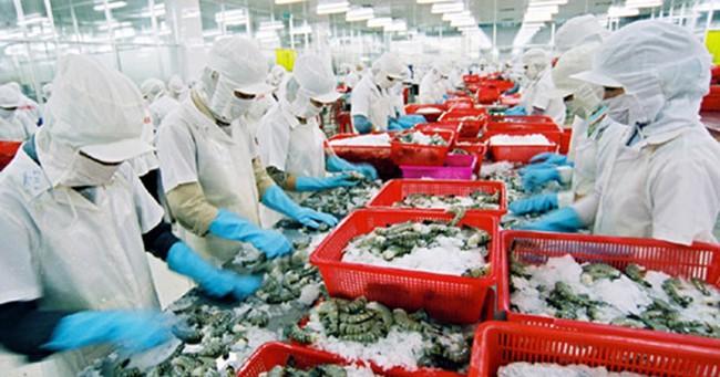 Xuất khẩu thuỷ sản gặp khó khăn do thiếu nguyên liệu
