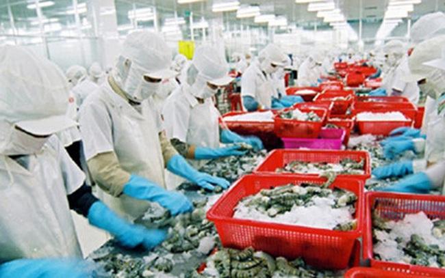 Xuất khẩu tôm Việt Nam sang Mỹ tiếp tục tăng