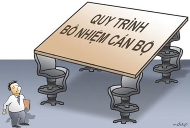 Bố trí Phó Giám đốc Sở đảm bảo đúng quy định