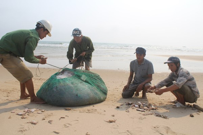 Sau thảm họa cá chết ở Miền Trung: 4 ngư dân ra khơi một đêm, chia nhau được 20 ngàn đồng