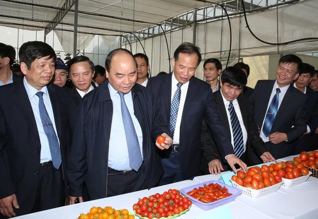 Vừa nhậm chức, Thủ tướng sẽ trực tiếp đối thoại với doanh nghiệp