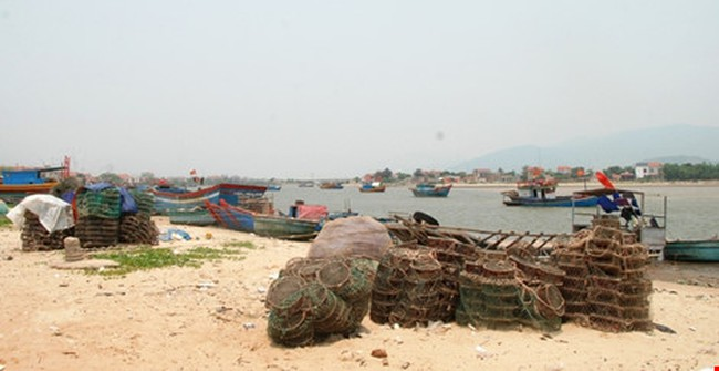 Cá biển tiếp tục chết, ngư dân Quảng Bình điêu đứng
