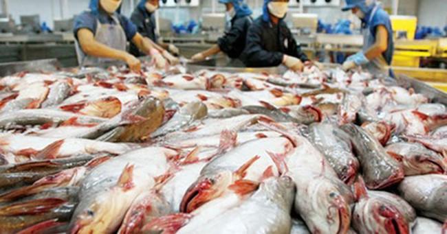 Bộ Công Thương nói về Thượng viện Mỹ hủy bỏ giám sát cá da trơn