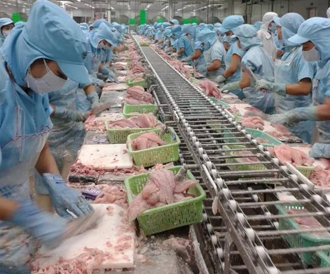 Giá tôm, cá nuôi tăng mạnh