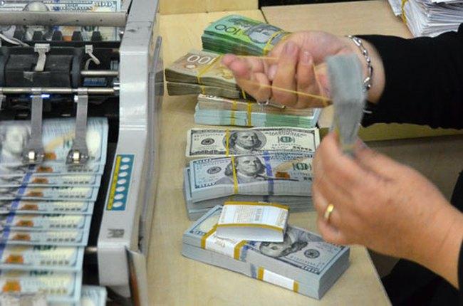 Tất cả các tổ chức tín dụng đã hủy mua ngoại tệ kỳ hạn với NHNN