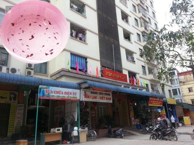 Nguyên nhân giun sán xuất hiện trong nước sạch ở chung cư CT9 Định Công