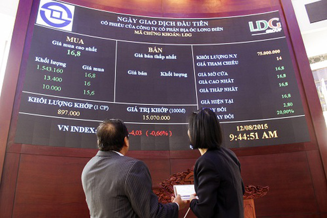 Công ty mẹ LDG Group: Quý 4 báo lãi vượt trội nhờ bán dự án The Viva