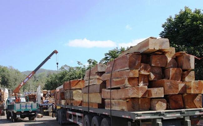 Mỹ, Trung Quốc vượt Lào về xuất gỗ vào Việt Nam