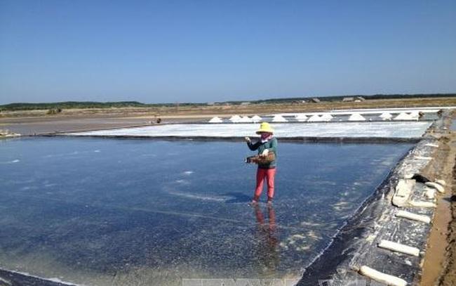 95.000 tấn muối tại Cần Giờ đã được đăng ký mua