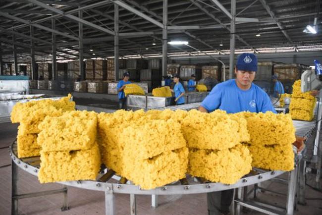 10 tháng xuất khẩu cao su gần 1,3 tỷ USD