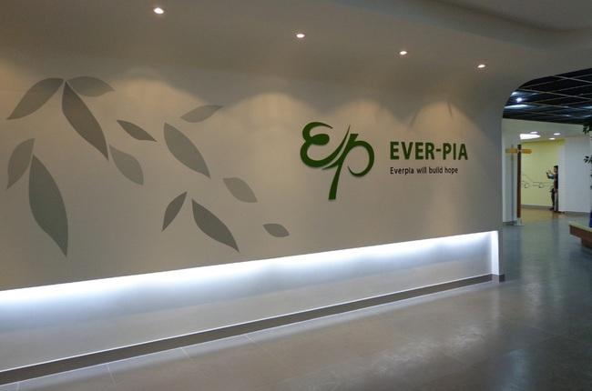 Sau quyết định nới room, khối ngoại gia tăng sở hữu EVE lên 53,89%