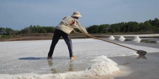 Kiến nghị Trung ương cứu 92.000 tấn muối