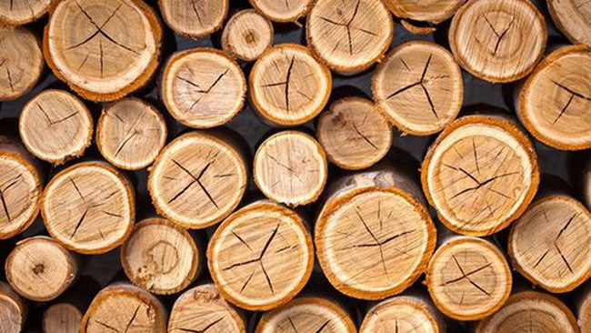 Nhiều đơn hàng gỗ dịch chuyển từ Trung Quốc sang Việt Nam